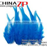 Top Supplier ZPDECOR Wholesale Good Quality Natural Colored Blue Chicken Rooster Saddle Feathers for Sale