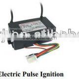 High Energy Electric Pulse Igniter for gas ignition system                                                                         Quality Choice