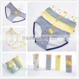 Cotton Panties Cute fruits Printed Cartoon Underwear Women