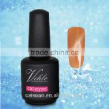 V.chlo Professional Nail UV Gel Curing Soak Off Glitter Cat Eye Gel Polish 15ML