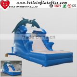 8mL Giant Dolphin Inflatable slide
