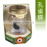 Electronic Peacock Butterfly in a Jar Charming Fluttering Butterfly Jay Creative Solar Butterfly Gifts for Children