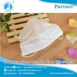 Disposable Earloop two layers Non woven Face Mask