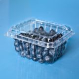 4.4oz/6oz/pint clear plastic blueberry packaging clamshell