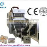 Automatic Egg Tray Production Line with high quality / Egg Tray Machine/ Waste paper recycling machinery