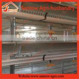 Stable steel structure professional chicken egg layer cage turnkey project for poultry farm design                                                                                                         Supplier's Choice