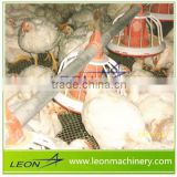 LEON Low price of best selling poultry feeding equipments automatic chicken layer broiler flooring ground feeding system