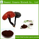 Factory Supply Reishi Shell Broken Spore Powder for Cancer
