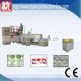 Polyethylene Foamed Fruit Packing Production Line(TYEPEW-75CE APPROVED)