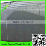 Suntex high quality HDPE mono filament recycled clear insect net,PE woven fine mesh aphids repellent nets