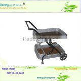 rattan trolley/outdoor furniture