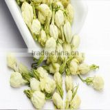 Fresh Jasmine Fflowers Jasmine Green Tea