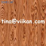 Melamine Paper Impregnation for Furniture