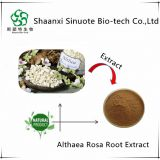 Free Sample Althaea Officinalis Root Extract Powder