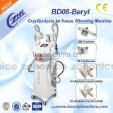 Reduce Cellulite BD08 New Slimming Cryo Fat Freezing Cryolipolysis Slimming Machine Fat Reduce
