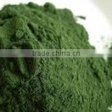 100% NATURAL DRIED SEAWEED POWDER USED FOR ANIMAL FEED/ SEAWEED POWDER/ NATURAL SEAWEED POWDER