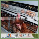 Trade Assurance 2m 3 Tier Egg Laying Chicken Cages for Sale sales06@chinafencefactory.com