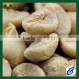 Laos Arabica Green Coffee Beans