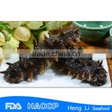 IQF quick freezing sea cucumber / seafood frozen machinery / blast freezer tunnel machine