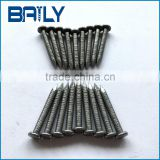 Baily Metal Products supply high quality bright polished wire bulk nails for holland market