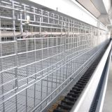 Mauritius Poultry Farm Equipment Battery Broiler Cage & Meat Chicken Cage & Chicken Coop in Broiler House