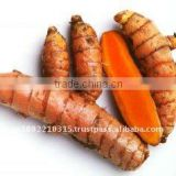 Turmeric Curcumin (Standardized 95% Curcuminoids)