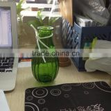 200ml glass vase with leather rope and flower                                                                         Quality Choice