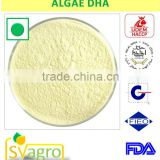 Top Quality Algae DHA Powder