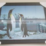 401633 PS Picture Frame 40x50
