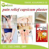 Pain Killer Relief Patch/Capsicum Plaster