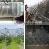 2016 hot sale Agricultural HDPE anti bee nets / anti hail netting /anti wind screen net mesh