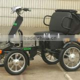 two seat electric bike
