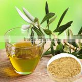 Pharmaceutical grade water soluable Olive Leaf Powder Extract,CAS:32619-42-4