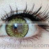50 colors Colors of the Wind magic eye contact lens wholesale Korea cosmetic color contact lenses