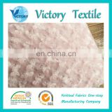 Factory Wholesales 100% Polyester Knitted Textile Pv Plush Fabric