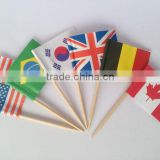 Customized Fancy Mini Country Flag Toothpicks