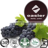 ISO Kosher Certificate Natural 95% OPC Grape Seed Extract Powder