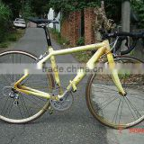700C'fiexed gear bike bicycle Gold color 18 speed racing bike,bicycle