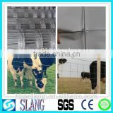 Factory supply high quality farm iron fence & field fence & cattle fence with the low price