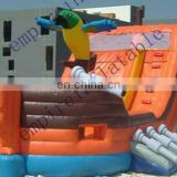 inflatable game china,commercial inflatable slide,cheap inflatables DS061
