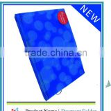 2013 British Legal size suspension file folder