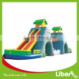 2016Hot-sale Ground Pool Water Slide for Adult Inflatable Water Park