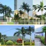 Outdoor Decorative Artificial Big Palm Tree Camouflaged Dry Tree Pole Steel Mounted Tree Made In China