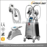 Customized most popular lipo cryotherapy slimming weight loss machine