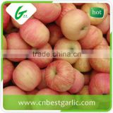 New fresh delicious red fuji apples fruits
