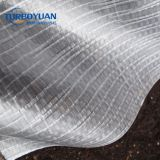 transparent woven pe fabric tarpaulin / HDPE tarp in roll for fruit trees rain protection