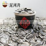 Sunflower seed for America type sunflower seeds 5009 price