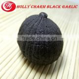 black garlic by fermention machine for 90 days