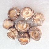 Dried White Tea Flower Shiitake Mushroom Cap without Leg