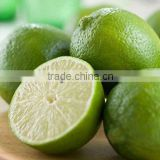 FRESH LEMON & lIME WITH BEST PRICE
